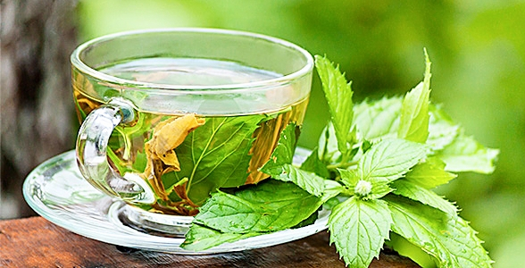 Green Tea Extract For Weight Loss?