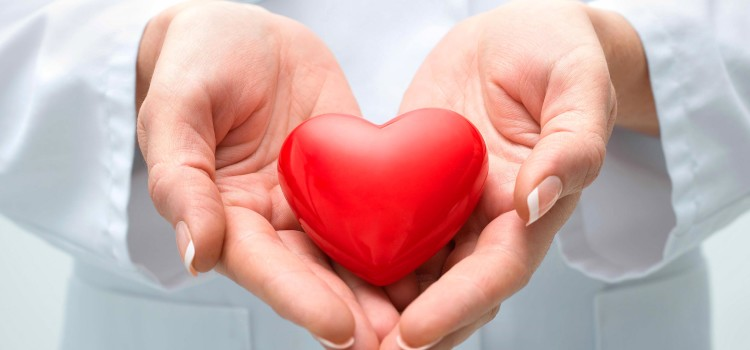 Organ Donation: Have You Made Your Decision?